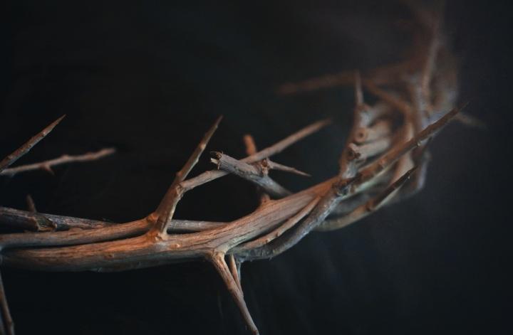 Une couronne d'épines